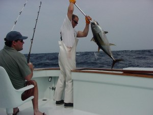 Charleston Harbor Tours Offshore Fishing