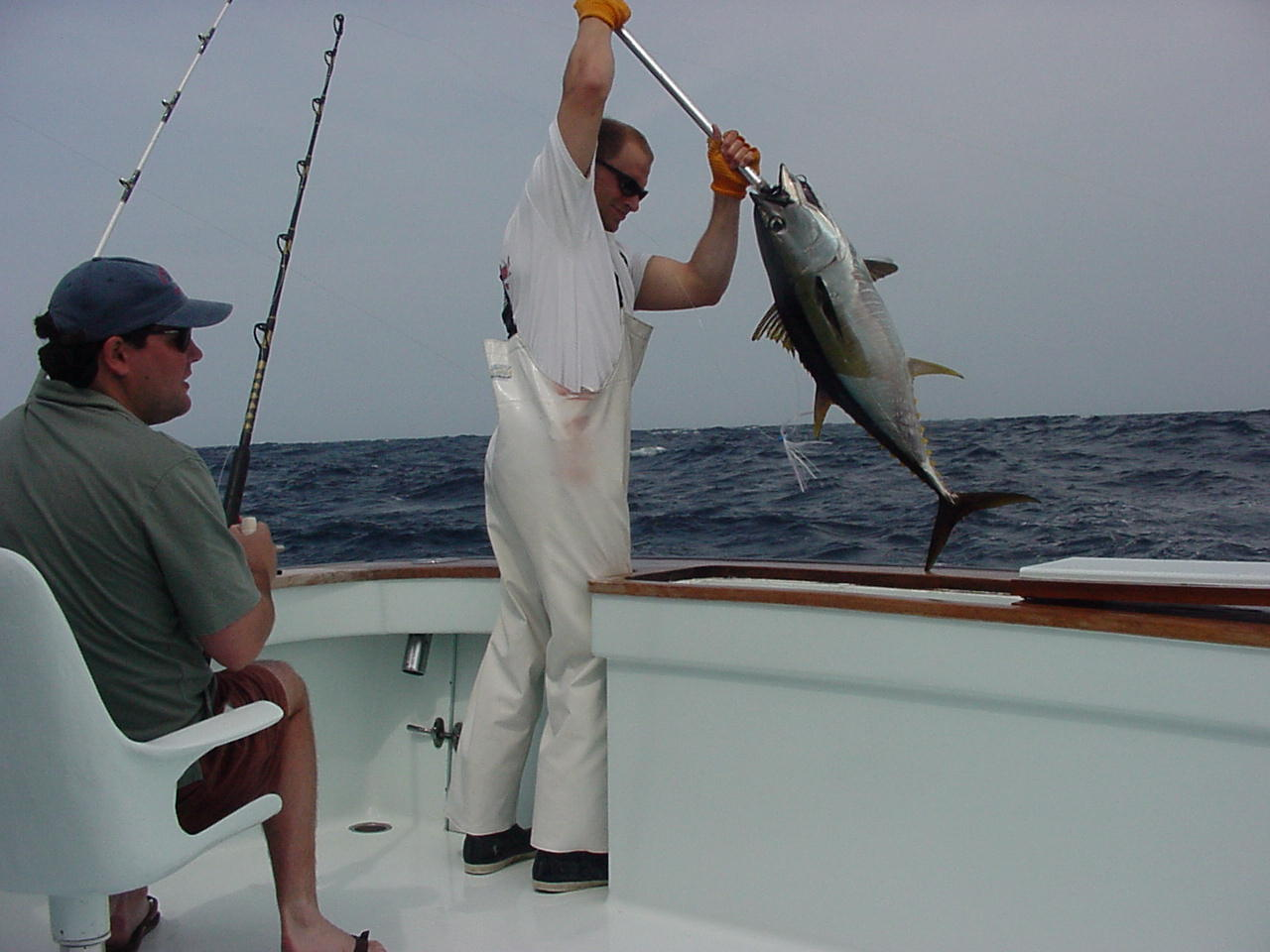 Charleston charleston harbor tours aquasafarisaquasafaris for Fishing charleston sc