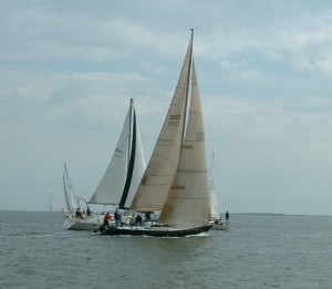 Team Building Regatta-Charleston Harbor